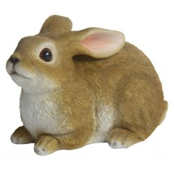 vidaXL Comida seca para perros Maxi Adult Essence Beef & Chicken 15 kg